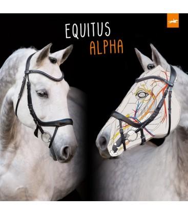 """Вуздечка анатомічна """"Equitus Alpha"""""""